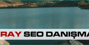Aksaray Seo Danışmanı