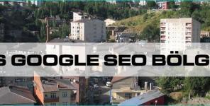 Bitlis Google Seo Bölgesel