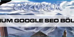 Erzurum Google Seo Bölgesel