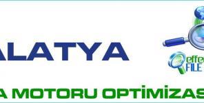 Malatya Arama Motoru Optimizasyonu