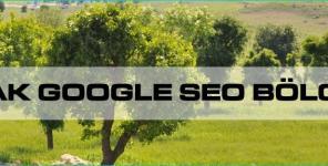 Şırnak Google Seo Bölgesel
