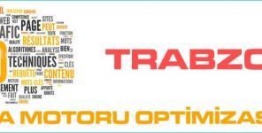 Trabzon Arama Motoru Optimizasyonu