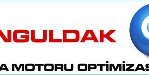 Zonguldak Arama Motoru Optimizasyonu