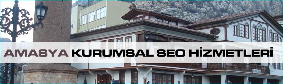 amasya-kurumsal-seo-hizmetleri