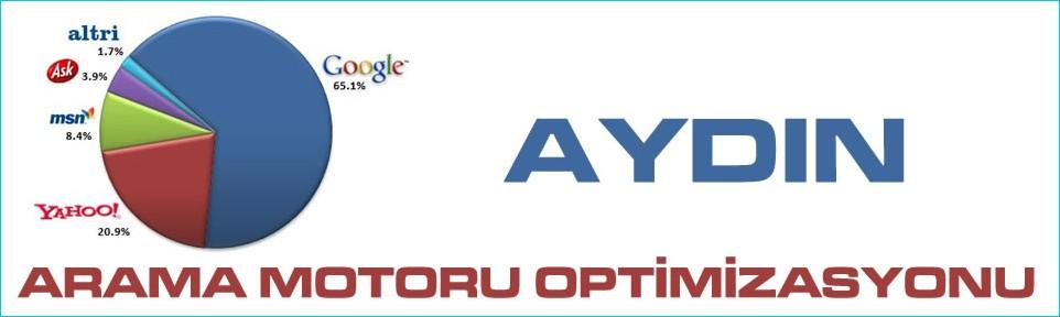 aydin-arama-motoru-optimizasyonu