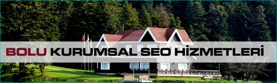 bolu-kurumsal-seo-hizmetleri