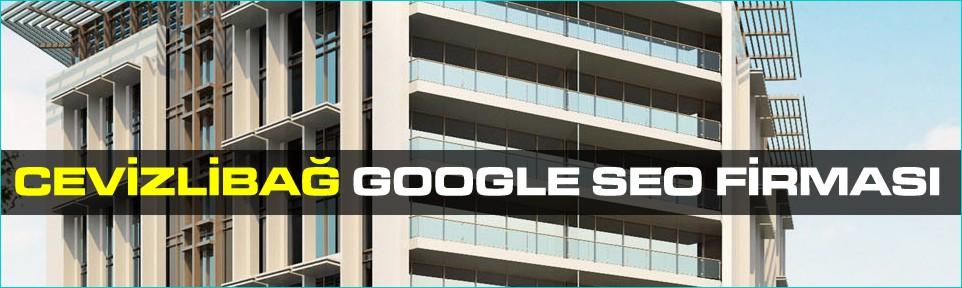 cevizlibag-google-seo-firmasi