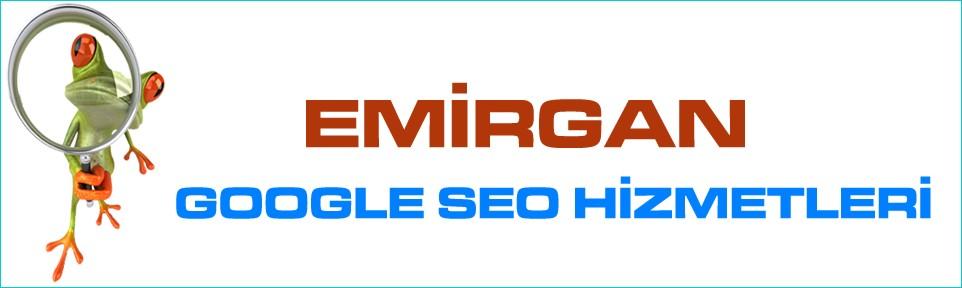 emirgan-google-seo-hizmetleri