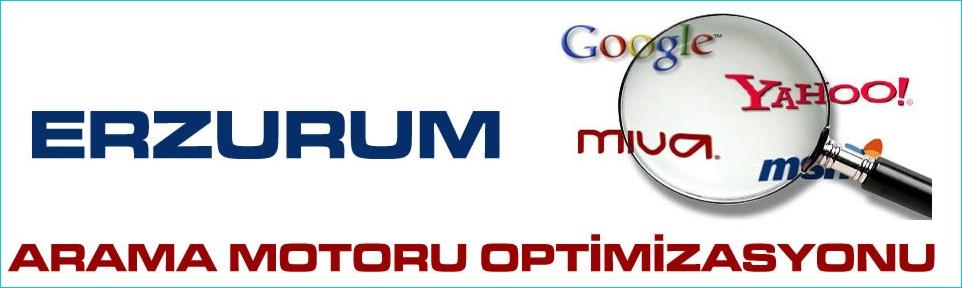 erzurum-arama-motoru-optimizasyonu