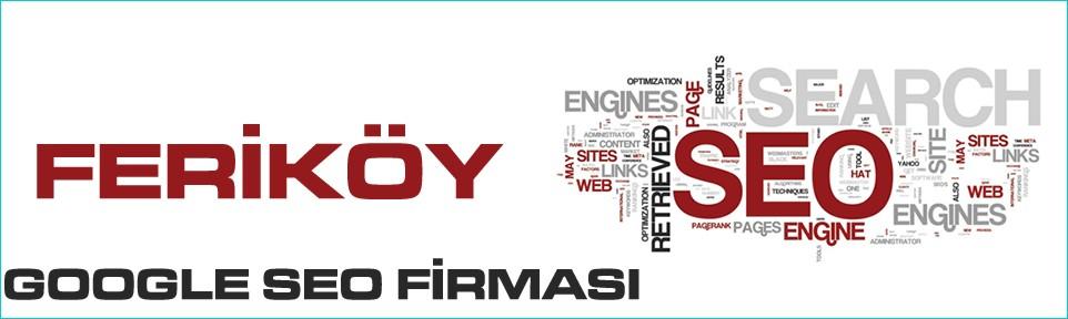ferikoy-google-seo-firmasi
