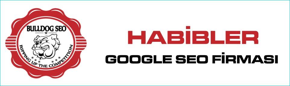 habibler-google-seo-firmasi