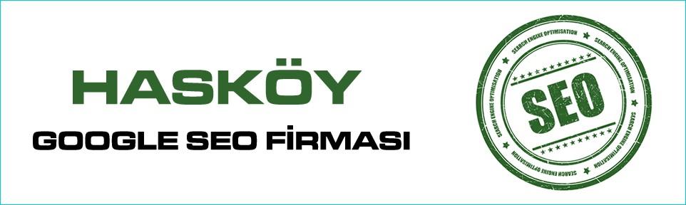 haskoy-google-seo-firmasi