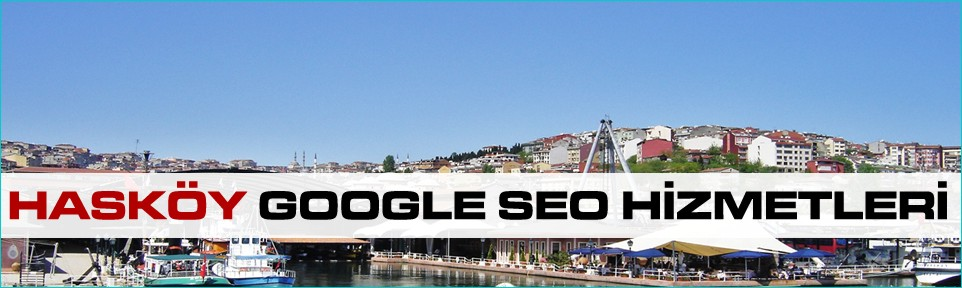 haskoy-google-seo-hizmetleri