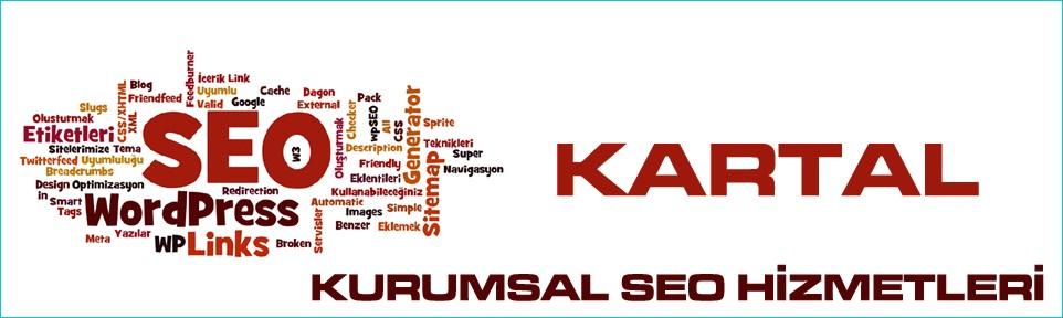 kartal-kurumsal-seo-hizmetleri