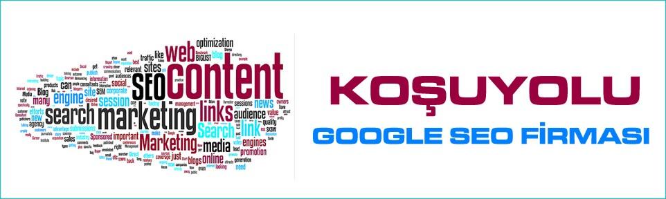 kosuyolu-google-seo-firmasi