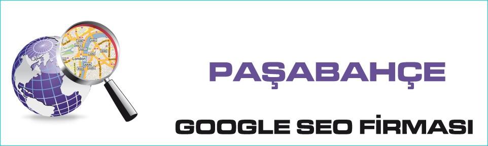 pasabahce-google-seo-firmasi