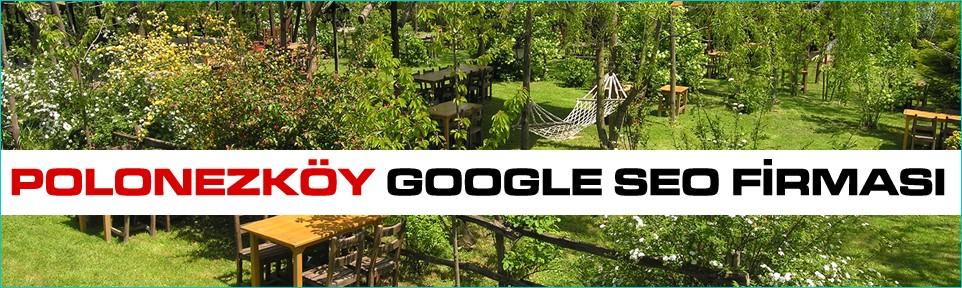 polonezkoy-google-seo-firmasi