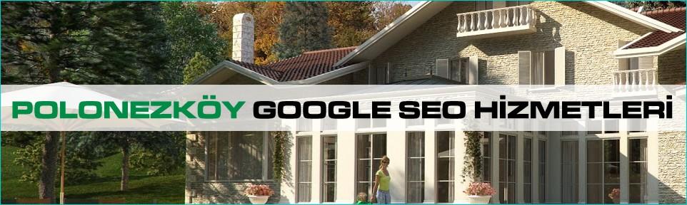 polonezkoy-google-seo-hizmetleri