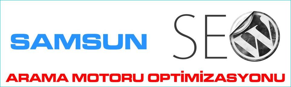 samsun-arama-motoru-optimizasyonu