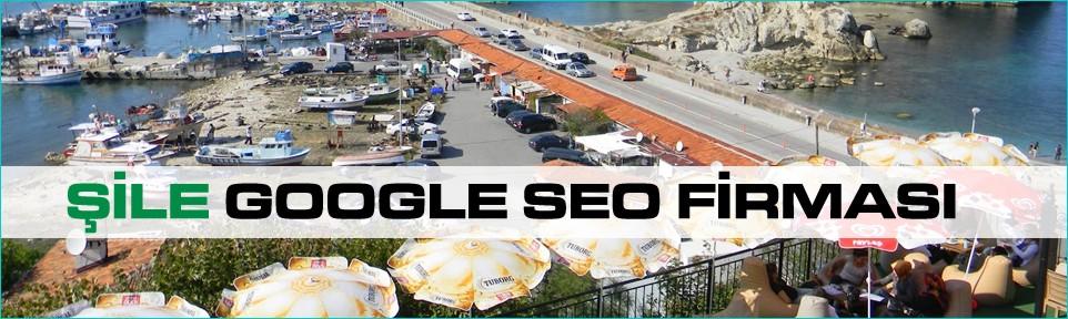 sile-google-seo-firmasi