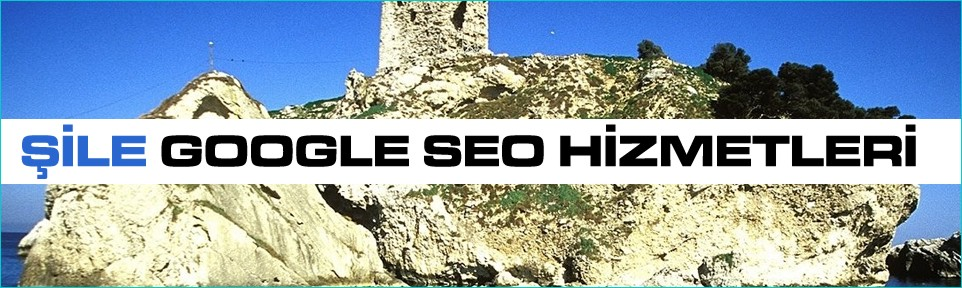 sile-google-seo-hizmetleri