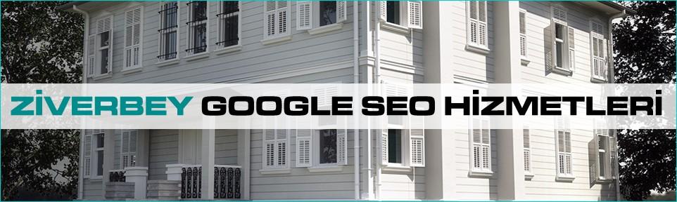 ziverbey-google-seo-hizmetleri