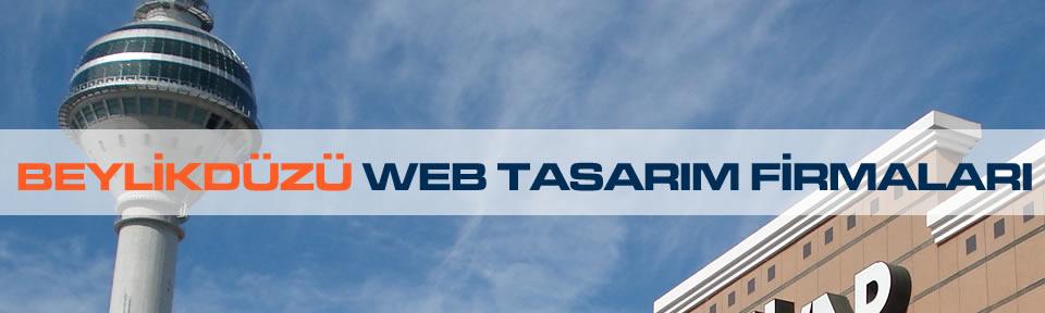 beylikduzu-web-tasarim-firmalari