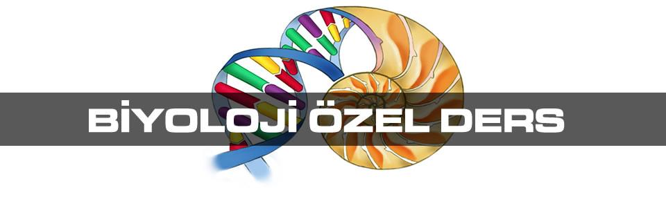 biyoloji-ozel-ders
