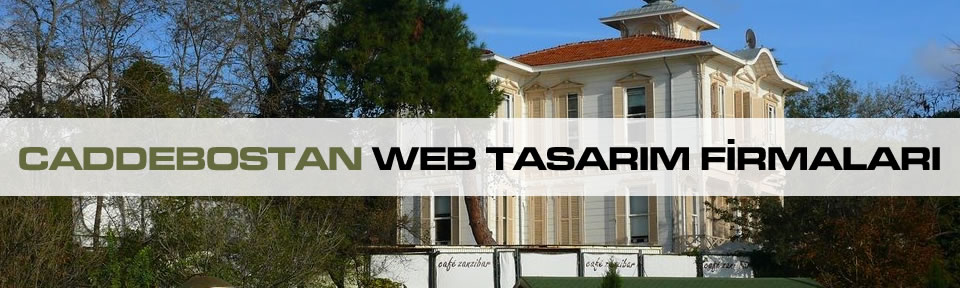 caddebostan-web-tasarim-firmalari