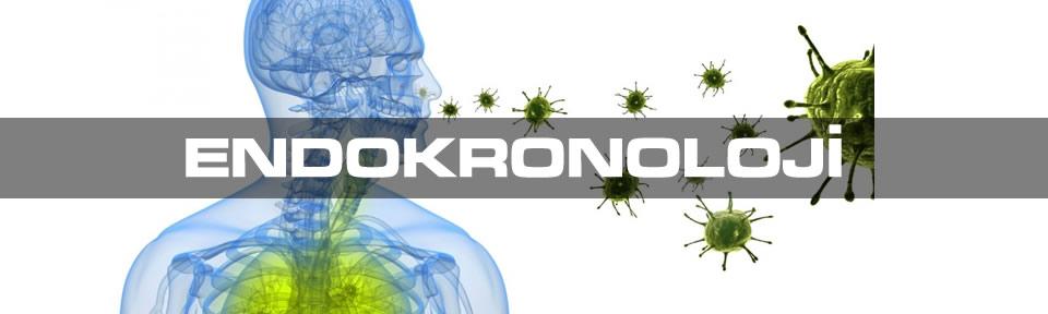 endokronoloji