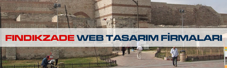 findikzade-web-tasarim-firmalari