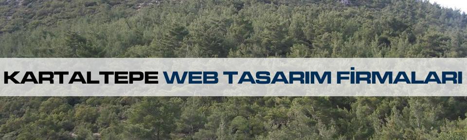 kartaltepe-web-tasarim-firmalari