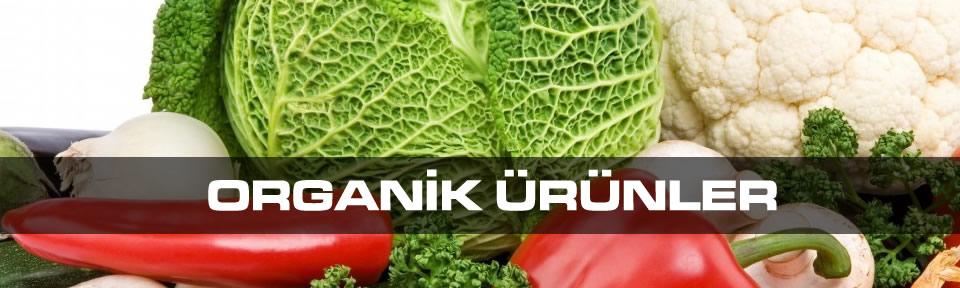 organik-urunler