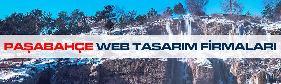 pasabahce-web-tasarim-firmalari