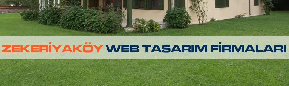 zekeriyakoy-web-tasarim-firmalari